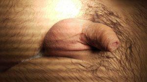 testic 1